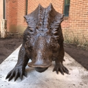 Archie the Aetosaur