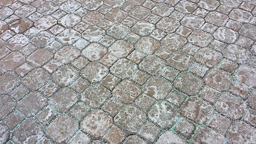 road salt on pavement