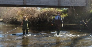 researchers in river